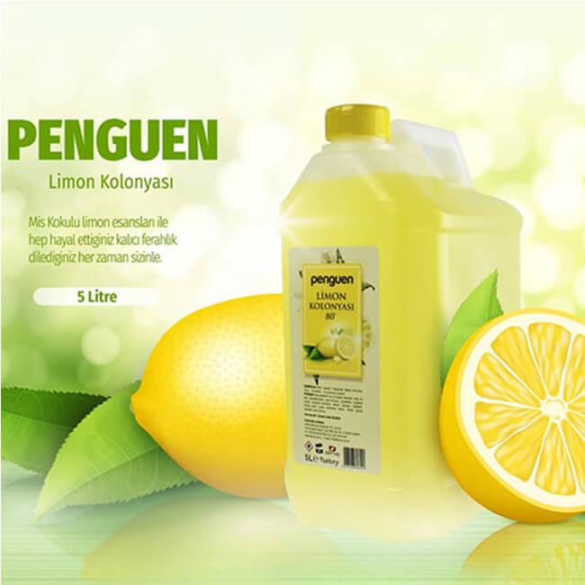 Penguen Limon Kolonyası